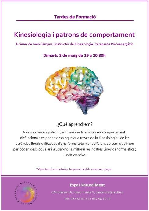 8 mayo kinesiolgia y patrones de comportamiento