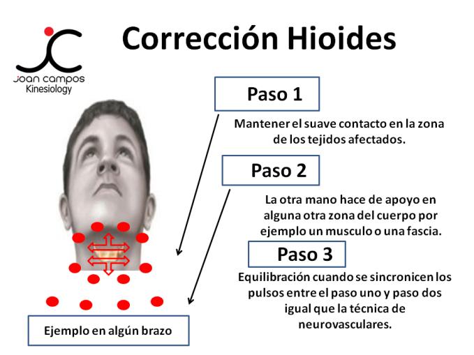 Corrección Hioides 2.png